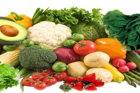 Vegetable - fresh vegetables
